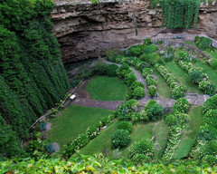 Herbology-Cave_02.jpg